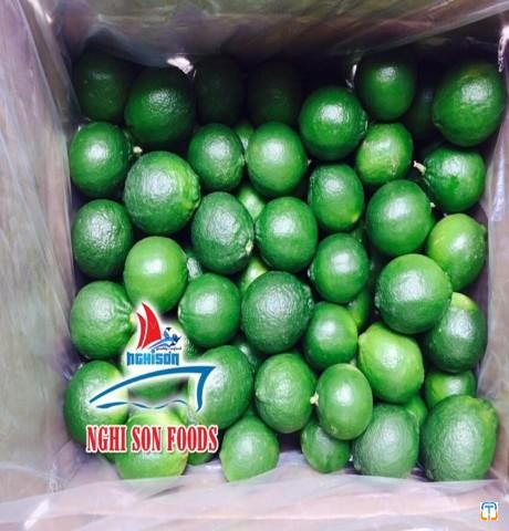 SEEDLESS LIME GOOD QUALITY