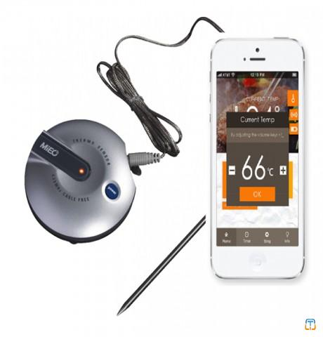 Bluetooth BBQ Thermometer