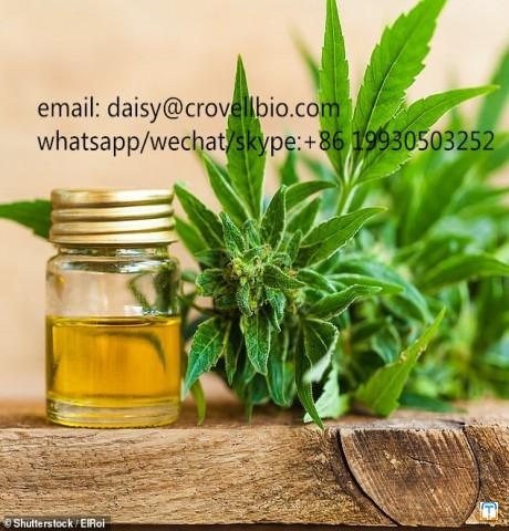 70% Cannabidiol Isolate powder CBD oil with CAS 13956-29-1