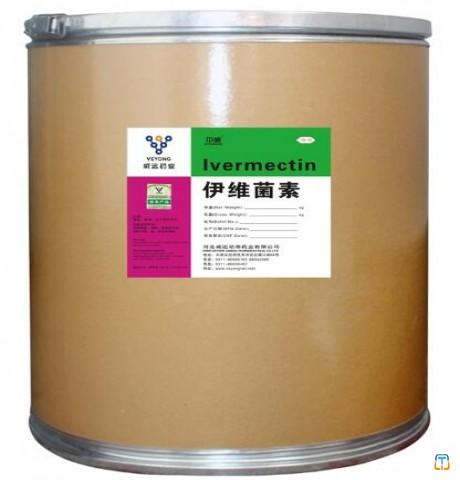 Veterinary medicine Ivermectina for dogs with GMP & CEP