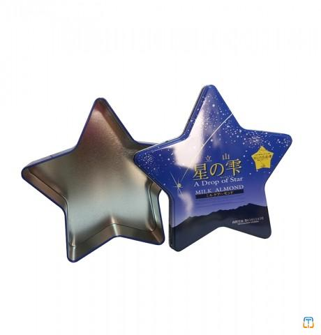 Christmas star shape cookie tin box